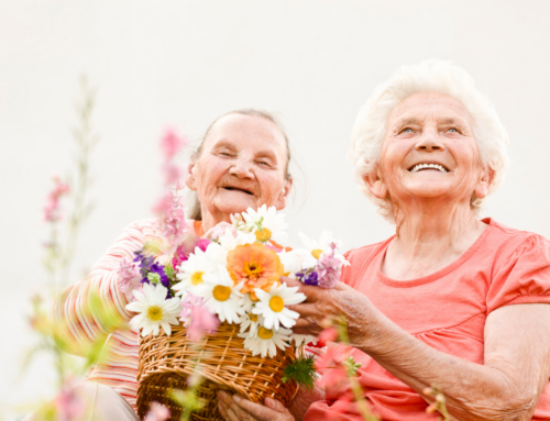 Help Seniors Stay Cool In The Summer